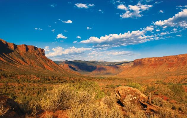 Land Conservation
